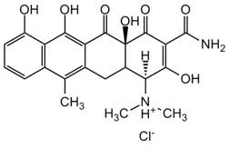 小分子与天然产品AdipoGen小分子与天然产品系列-小分子与天然产物