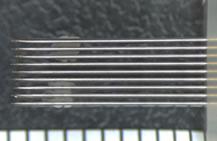 PrimeSurface低吸附细胞培养板-细胞培养板