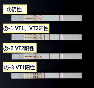 NH免疫层析系列