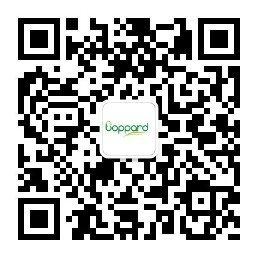 Tau-383 Protein, Human, recombinant Tau-383蛋白,人,重组-WAKO和光纯药