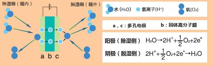 可调控湿度干燥柜_价格-厂家-供应商-WAKO和光纯药(和光纯药工业株式会社)